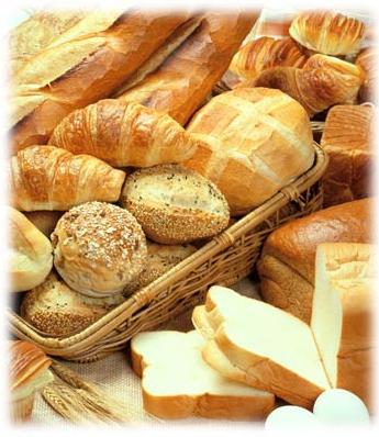 軟麵包 | [組圖+影片] 的最新詳盡資料** (必看!!) - www ...