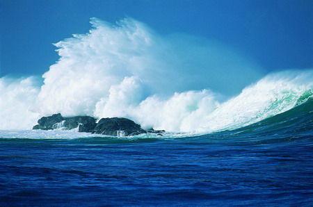 沙洲以及在低潮时出露礁坪或礁石的低潮高地共54