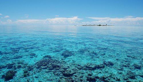 菲律宾的图巴塔哈群礁海洋公园