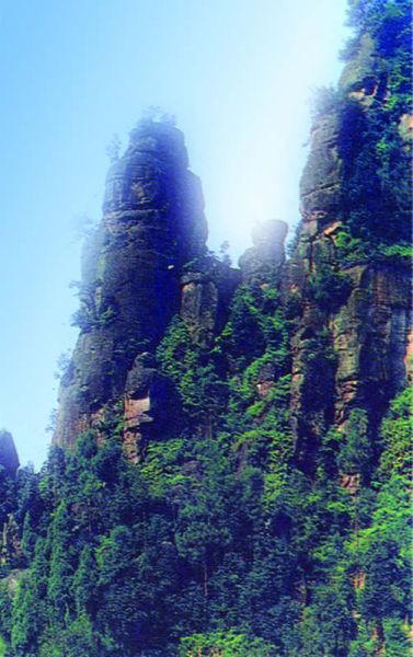 高石梯森林公园-成都周边消夏避暑旅游全攻略