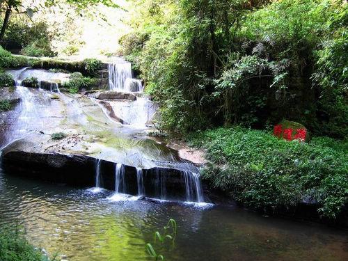 此外,碧峰峡景区内山高林密,通往风景区和动物园长长的游道也非常凉爽