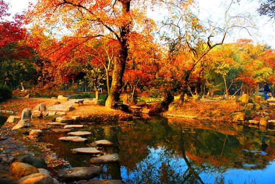 苏州天平山风景区图片