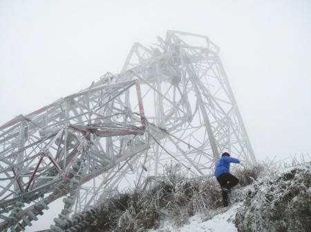 倒塌的输电铁塔