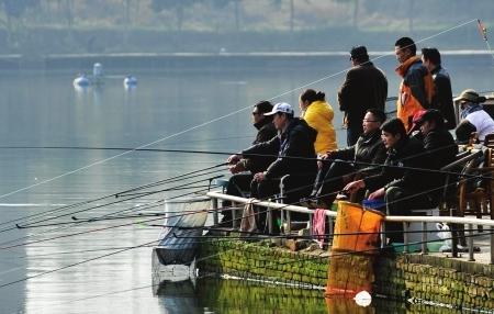 资深钓友在双流举行钓鱼比赛
