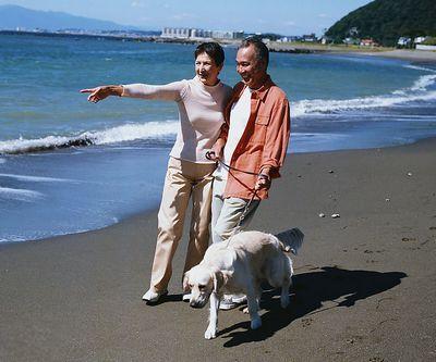中老年浪妇_中老年人患骨质疏松症图片