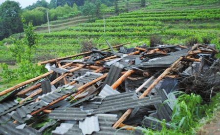 因灾倒塌的农户房屋