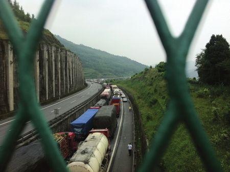 从广元驶来的近千辆车被堵在高速路上,排起了长达三公里的长龙。