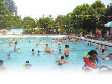 市民称,天太热了,明知不卫生,也只有在泳池纳凉解暑。