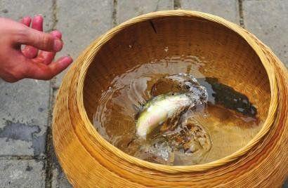 """""""宁可食无肉,不可居无竹"""",有着2000年传承历史的道明竹编从田间地头发轫,经一代代能工巧匠之手,成为温润淡雅的君子之器。"""