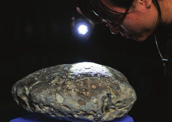 成都理工大学,一名工作人员在观看化石上的纹理。