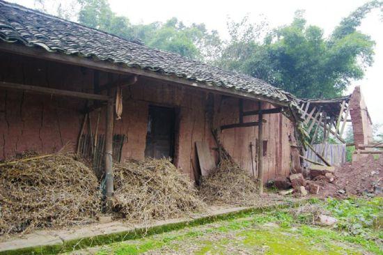 陈芳的老家,多年前开始只有陈芳的母亲李霞一个人居住。