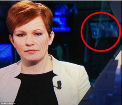 瑞典一家电视台直播新闻,不雅画面持续达10分钟。