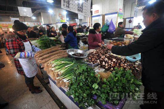 贵 成都豌豆尖价拔尖市场难觅一元菜