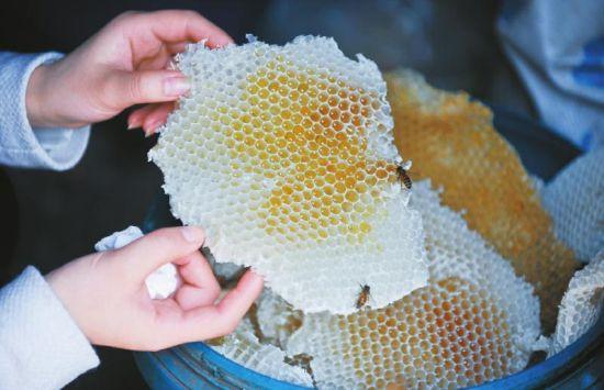 蜂农向记者展示刚从蜂箱内取出的蜂蜜。