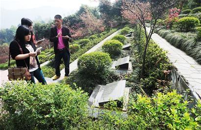 张国荣墓地
