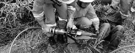 消防队员用液压剪将野猪夹剪开