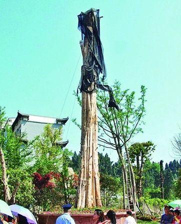 遂宁百万名树枯死