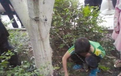 男孩被父亲用铁链锁在小区树上。(网友供图)