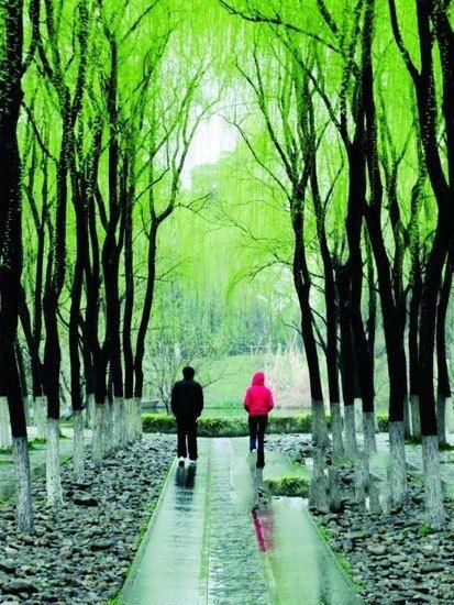 组图:清新淡雅国内初夏最美的雨中风景