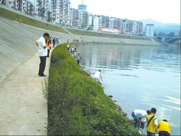 高县居民在南广河拾鱼
