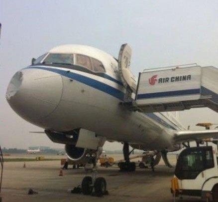 国航成都飞广州航班起飞后遭遇鸟击返航(图)