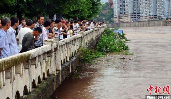 洪峰过境 市民钓鱼喝茶打牌