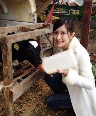 女主播与小牛合影