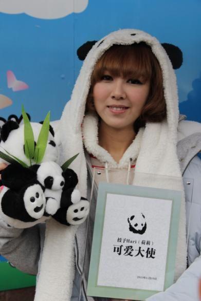 韩国可爱教主hari 与熊猫可爱大比拼_新浪四川娱乐