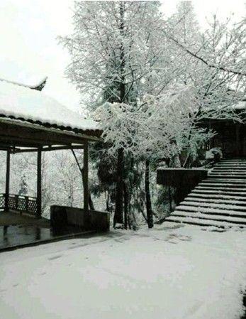 都江堰青城后山飘雪6小时