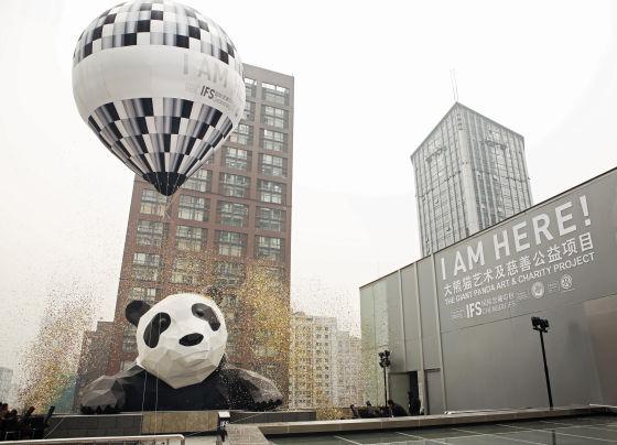 成都春熙路爬墙大熊猫真容公布