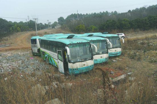 据村民反映,四辆旅游大巴车在这里停放了半年之久摄影记者王天志