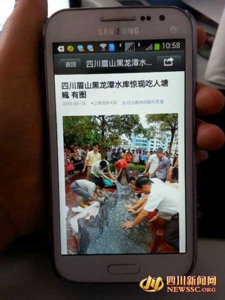 http://www.msbmw.net/qichexiaofei/31075.html