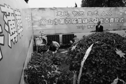 眉山倡导绿色惠民殡葬 38名逝者仅用1平方米墓地