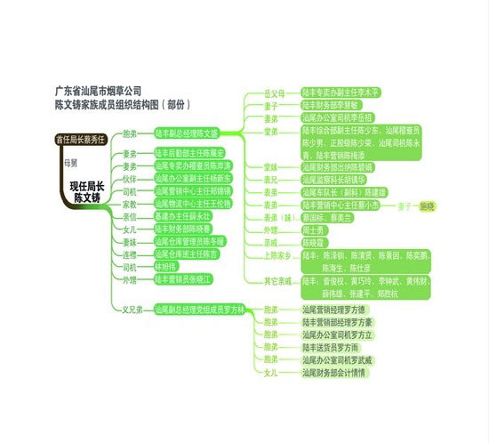 陈文铸家族成员组织结构图(图片来源:网络)