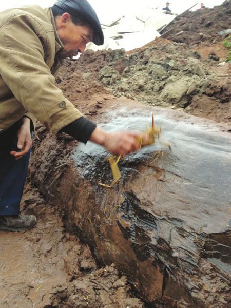 广安,付师傅正在擦拭疑似乌木的树体。