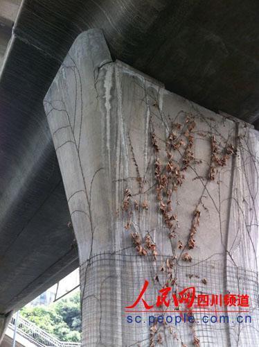桥墩破裂处(记者 王思涵摄)