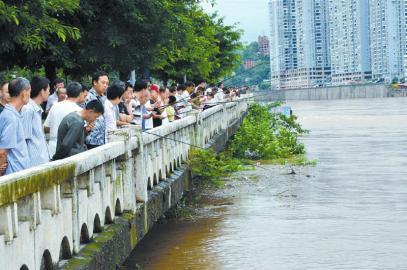通川桥沿岸鱼竿林立。一些市民收获颇丰,水桶中装满了鱼。