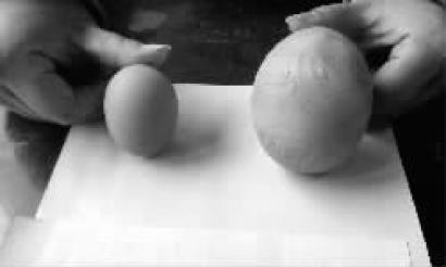大鸡蛋与普通鸡蛋对比 读者供图