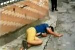 击毙景点游客装死